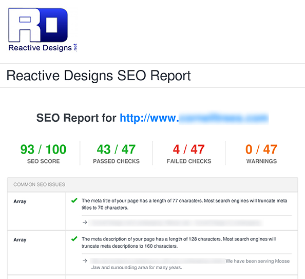 Reactive Designs SEO Moose Jaw Report 1